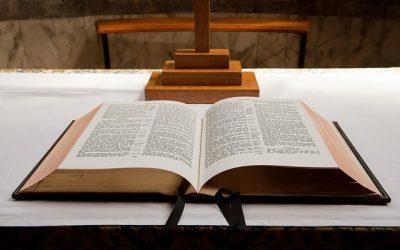 Il lettore o il proclamatore della Parola